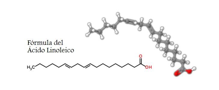 Resultado de imagen para acido linoleico