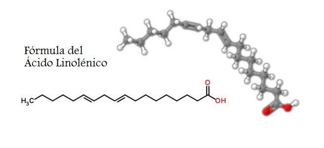 acido linolenico