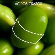 acidos grasos soja