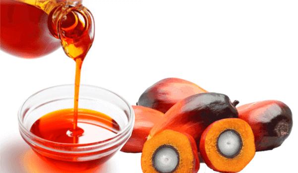 Características del aceite de palma